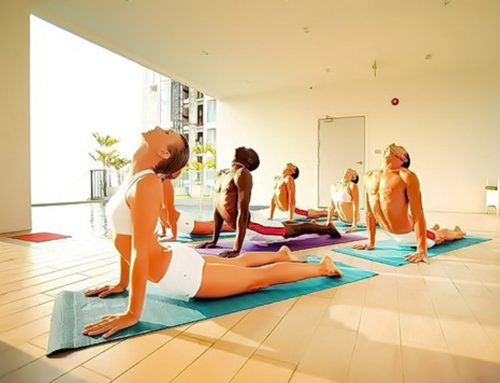 Considering Yoga, How About These Yoga Schools?